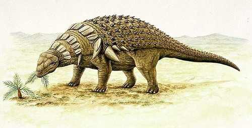 Dinosaurs wallpaper containing a triceratops entitled Edmontonia