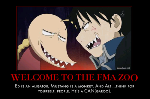 Full Metal Alchemist achtergrond with anime entitled FMA Zoo!