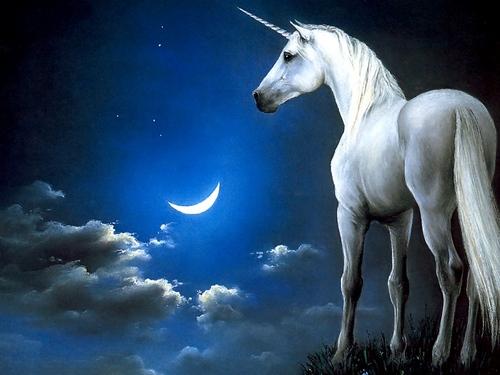 幻想 Unicorn