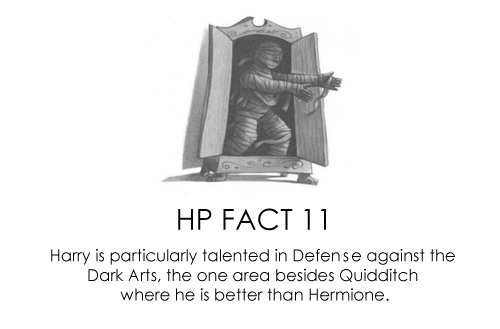 Harry Potter Vs. Twilight wallpaper entitled HP Facts