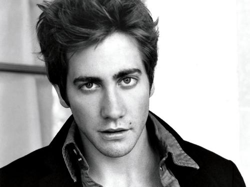 Jake Gyllenhaal wallpaper probably containing a portrait titled Jake Gyllenhaal