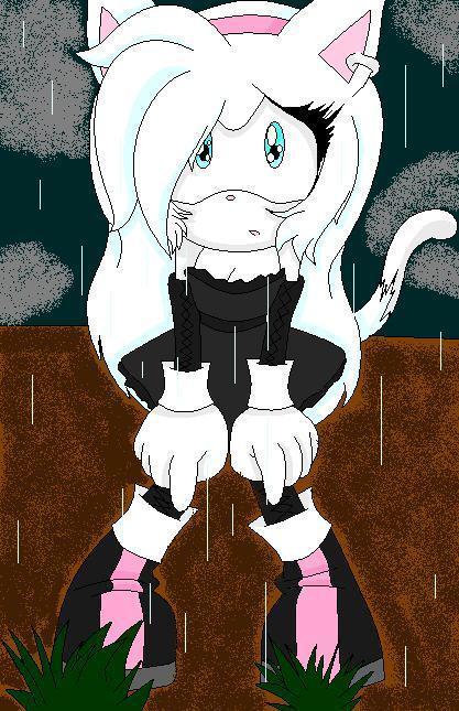Kimonaru the Cat