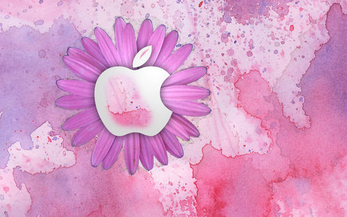 Pink (Color) wallpaper with a rose, a camellia, and an opium poppy titled Mac OS