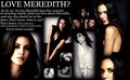 Meredith Sulez Support - vampire-diaries-books fan art