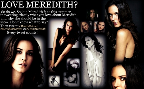Vampire Diaries Books wallpaper containing anime called Meredith Sulez Support