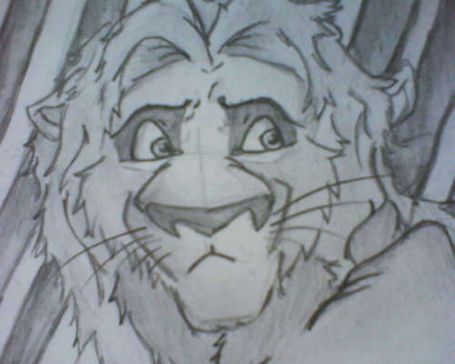 My Lion Drawing