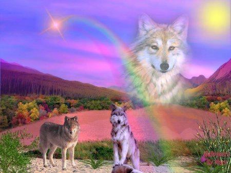 Mystical regenbogen