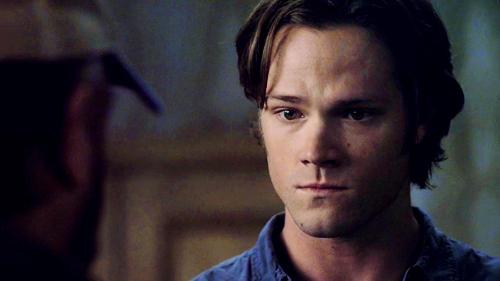 Sammy welpe eyes<3