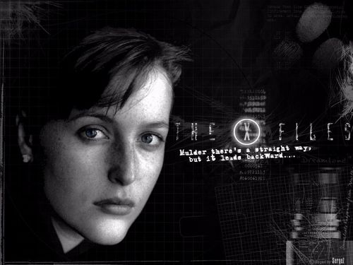 The X-Files wallpaper probably with a sign and a chainlink fence titled Scully