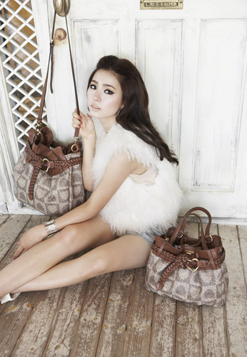 Shin Se Kyung wallpaper possibly with a living room called Shin Se Kyung - For Lovcat Bags Paris