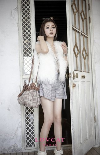 Shin Se Kyung wallpaper possibly with a fur coat titled Shin Se Kyung - For Lovcat Bags Paris