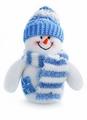 Snowman - christmas photo
