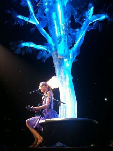 Speak Now... Help Now! konser (May 21, 2011)