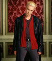 Spike Season 4 Promos - spike photo