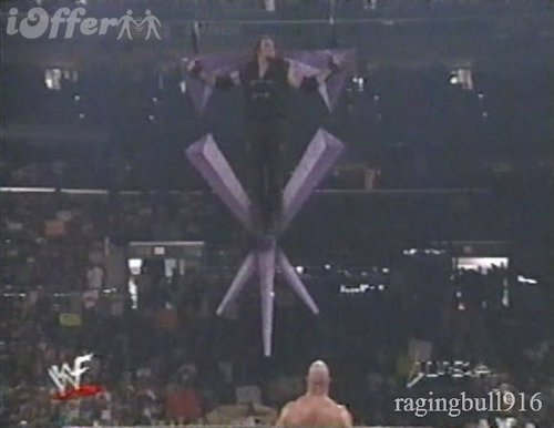 "Undertaker get sacraficed on his own Symbol door ""Stone Cold"" Steve Austin"