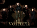 Volturi  - uniquezandys-articles wallpaper