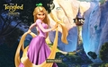 Walt Disney Wallpapers - Tangled - walt-disney-characters wallpaper