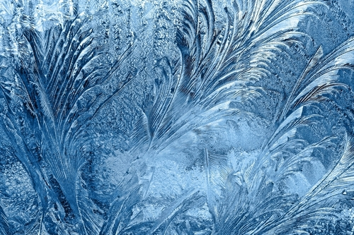 Winter snow flakes
