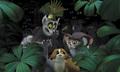 lemur team