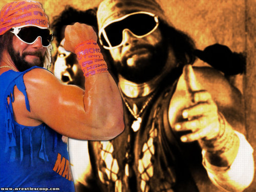 WWE wallpaper probably with sunglasses titled macho man