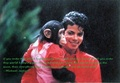 michael jackson randam - michael-jackson photo