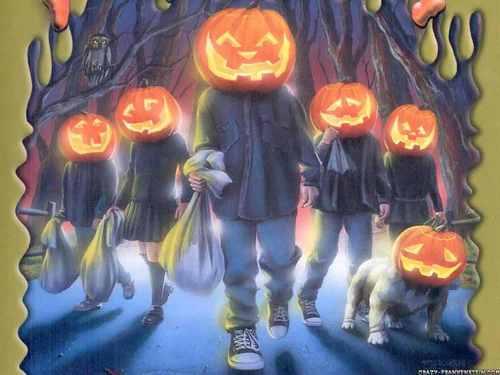~pumpkin~heads~