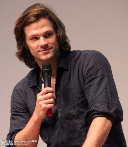 jared padalecki wallpaper containing a cleaver entitled AE Con 2011