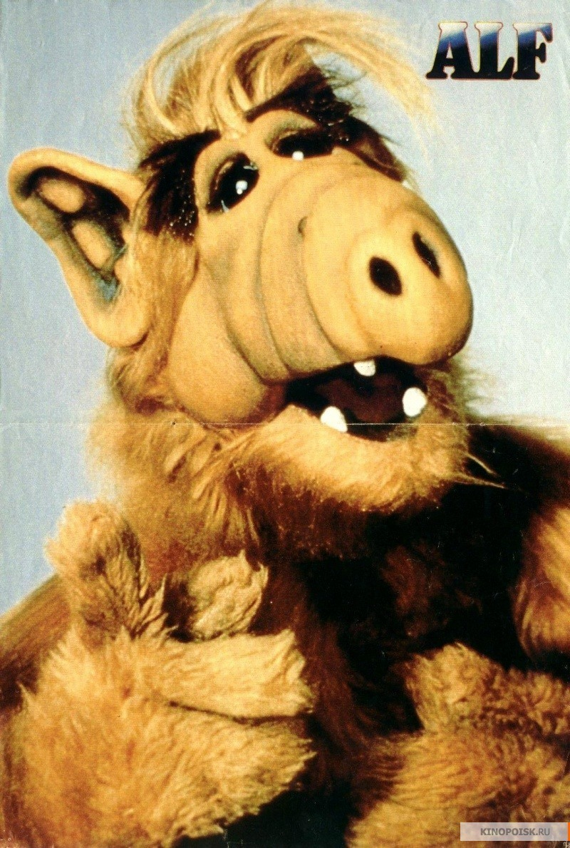 Alf Images Alf Hd Wallpaper And Background Photos 22318720