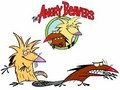 Angry Beavers - cartoon-fanatics photo