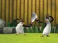 Bowling Pin Fight! :D