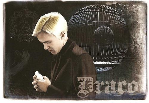 Draco wallpaper