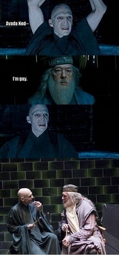 Harry Potter Vs. Twilight wallpaper titled Dumblemort LOL