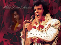 elvis-presley - Elivs Hawaiian Style wallpaper