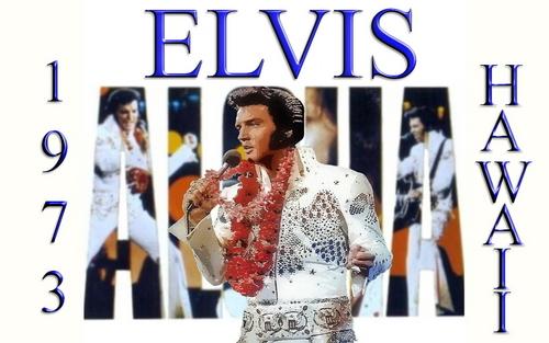 Elvis Presley wallpaper entitled Elivs Hawaiian Style