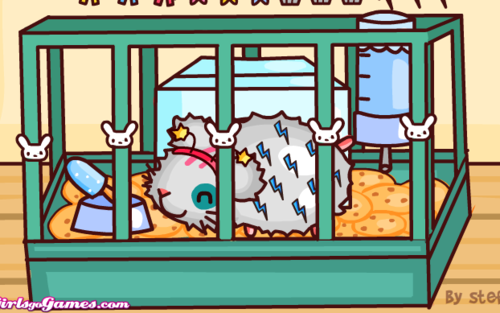 hamster Adoption Screenshot.