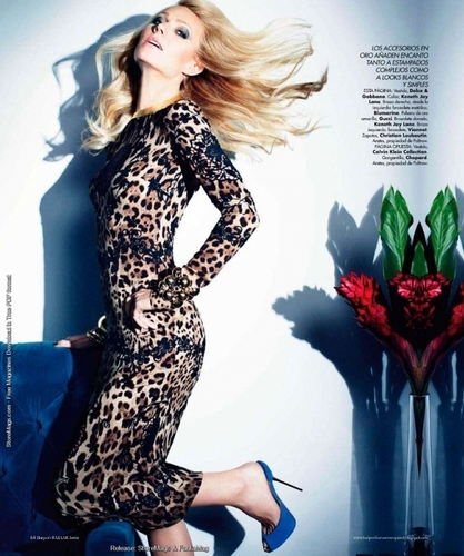 Harper's Bazaar MX - May 2011