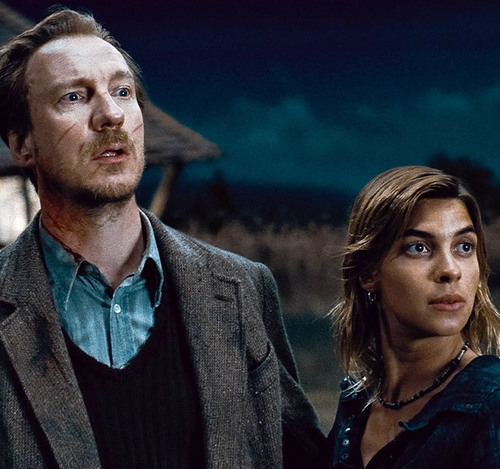 Remus Lupin with Tonks - remus-lupin Photo
