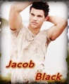 Taylor = Jacob Black - jacob-black-and-leah-clearwater photo