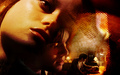 Terminator: The Sarah Connor Chronicles - the-sarah-connor-chronicles wallpaper