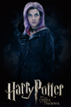 Tonks poster - tonks photo