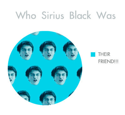 Who Sirius Black was!