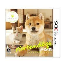 shiba nintendog + kucing
