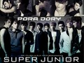 suju2 - super-junior wallpaper