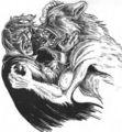 werewolf v vamp