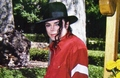 ~neverland ranch~ - michael-jackson photo