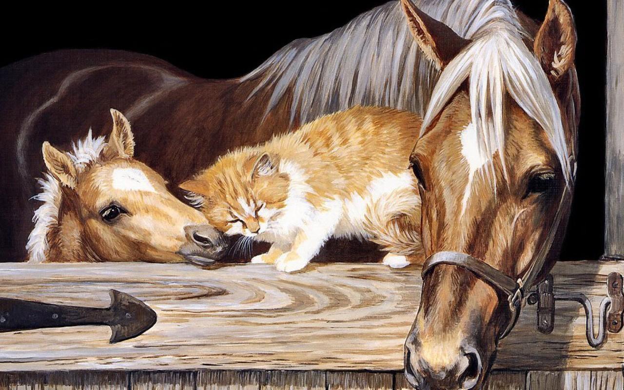 Beautiful horse horses wallpaper 22410542 fanpop for Beautiful horses