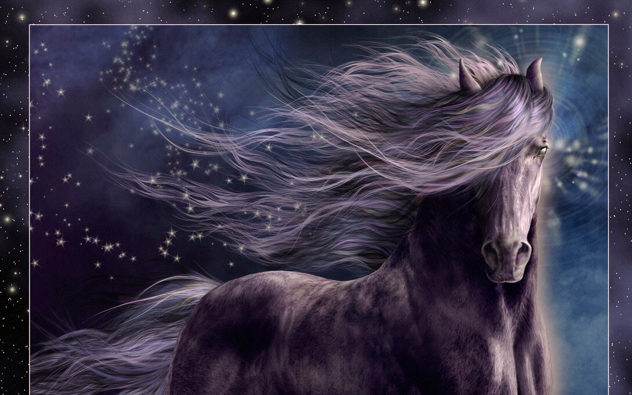 White Horse Wallpapers Pictures Photos Images