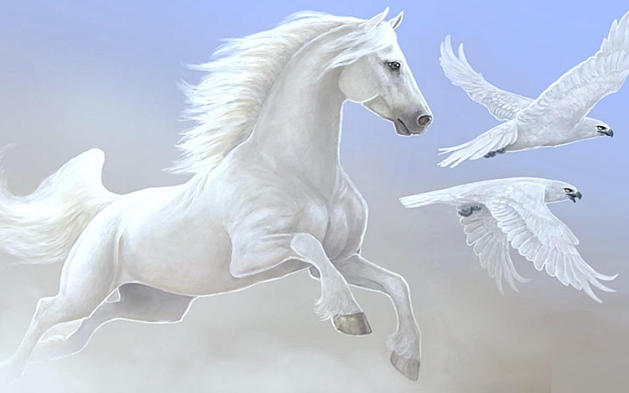 Beautiful horse horses wallpaper 22410557 fanpop for Beautiful horses