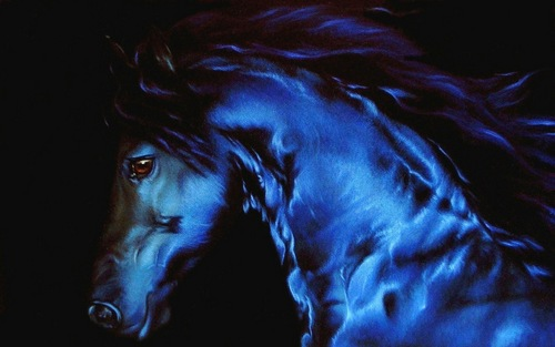 Horses wallpaper titled Beautiful Horse