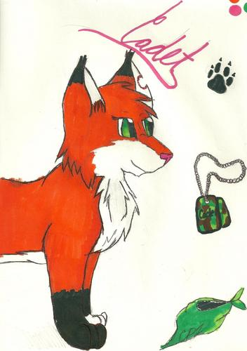 Cadet the rubah, fox